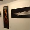 Exposición Fotografía Panorámica en el Museo Luís de Morales