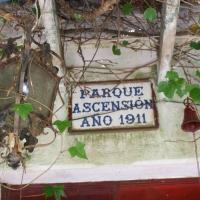 Entrevista a la Plataforma Salvar al Parque Ascensión de Badajoz