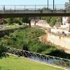 Peligro de envenenamiento para las mascotas en Badajoz