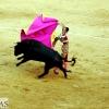 Imágenes de la segunda corrida de toros de la Feria de San Juan en Badajoz