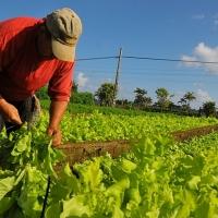 """Asaja: """"Los políticos se han olvidado del sector agrario en el Debate"""""""