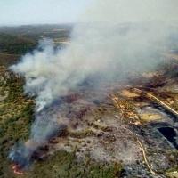 Nivel 1 de peligrosidad por incendio forestal en Casas de Don Pedro (Badajoz)