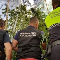 Detenidos dos miembros de una familia de Llerena por tráfico de drogas