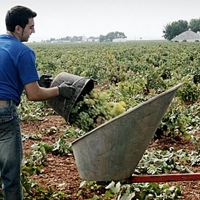 Jornada de Agroindustria 4.0 en el CID 'Vegas Bajas'