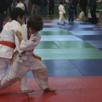 Imágenes del Trofeo Ciudad de Badajoz de judo 2017