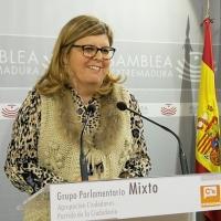 """Domínguez: """"Es necesario que haya un pleno monográfico sobre la financiación autonómica"""""""