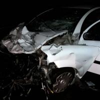 Un jabalí provoca un grave accidente en la provincia de Cáceres