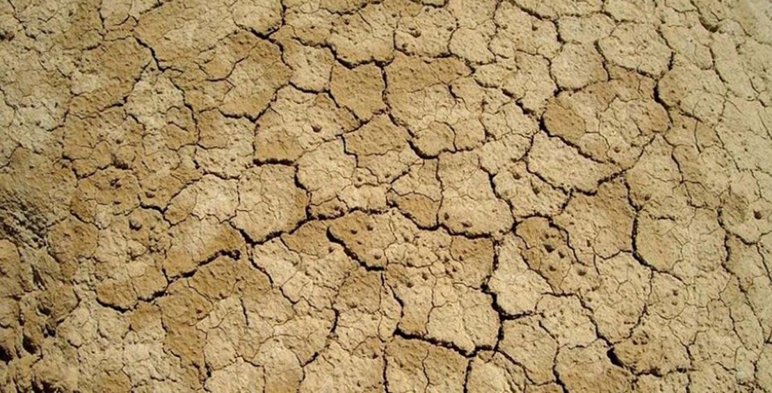 Ayudas de la Junta para financiar créditos agrarios por la sequía