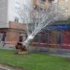 Imágenes que está dejando la Borrasca Gisele en Extremadura