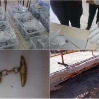 Vídeo explicativo sobre la exhumación de 48 personas en Extremadura