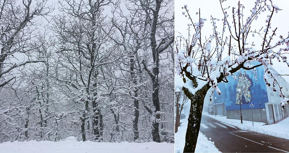 El norte extremeño volverá a estar en alerta por nieve el jueves