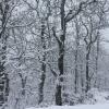 La nieve visita el norte de Extremadura por encima de 800 metros