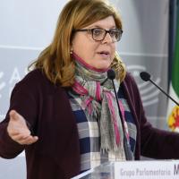 """Domínguez: """"La Sanidad empeora a medida que avanza la legislatura"""""""