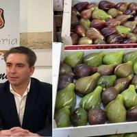 Barcarrota presenta a la Junta su marca 'Higo de Tiberia'