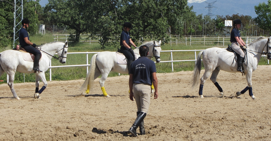 Un adolescente resulta herido tras caerse de un caballo
