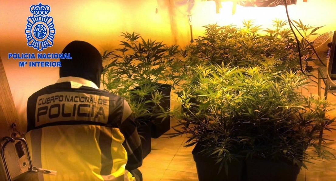 Cae un punto de venta de droga en Badajoz regentado por un menor