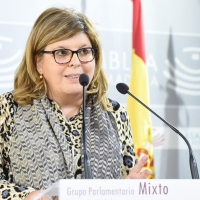 La diputada de Ciudadanos en la Asamblea no se sentará en el banquillo