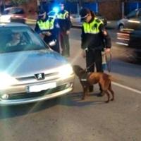 Circula sin luz, casi se estrella contra la Policía y se niega a pasar el test de alcoholemia