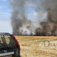 Un incendio amenaza a la urbanización Río Caya (Badajoz)