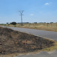 Ingresa en prisión el supuesto autor material de los incendios declarados en Cáceres