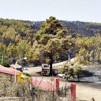 El incendio de Jola permanece controlado y desactivan el nivel 1 de peligrosidad
