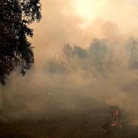 Incendio forestal en la comarca de Zafra Río-Bodión