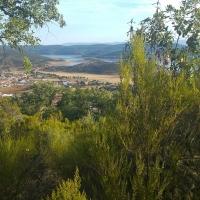 La Junta destina 2 millones para mejorar montes que no son de su propiedad