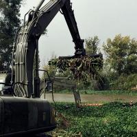La UME ya está en Badajoz para luchar contra el camalote durante todo el invierno