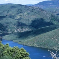 Talleres, rutas, degustaciones gastronómicas y visitas guiadas a Monfragüe y Tajo/Tejo