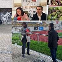 La Federación Española de Fútbol se interesa por el higo de Barcarrota
