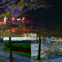 El fuerte viento deja algunos desperfectos en la ciudad de Badajoz y alrededores