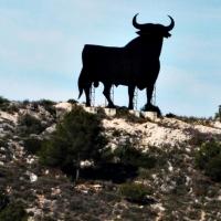 OPINIÓN: ¿Especie en peligro de extinción?