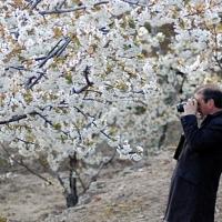 El Jerte lucirá un remodelado Palacio del Cerezo