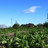 Asaja acusa a CCOO de romper el acuerdo sobre el SMI
