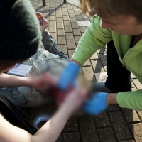 Un estudiante de medicina se arranca los ojos con sus propias manos en plena calle tras romper con su novia
