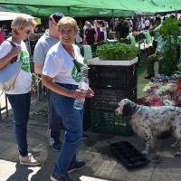 """Juntos por Badajoz: """"Los animales también nos necesitan"""""""