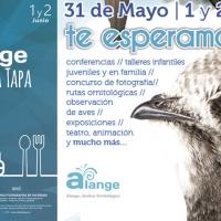 Alange vuelve a celebrar el festival de los vencejos y su ruta de la tapa