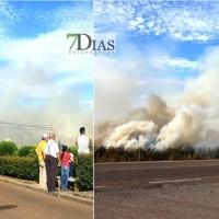 Incendio contiguo a la pedanía pacense de Gévora