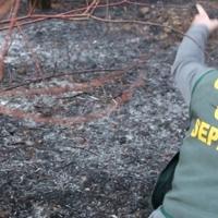 La Guardia Civil inicia su campaña de verano contra los incendios forestales