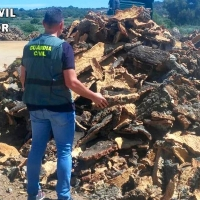 La Guardia Civil recupera una tonelada de corcho sustraído en Sierra de Fuentes