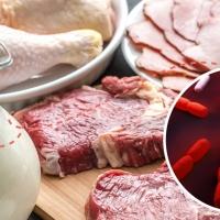 Decretada la alerta sanitaria por listeria en toda España