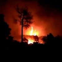 Arde la sierra de Tentudía (Badajoz)