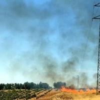 Los Bomberos del CPEI controlan un incendio de pastos cercano a Villafranca