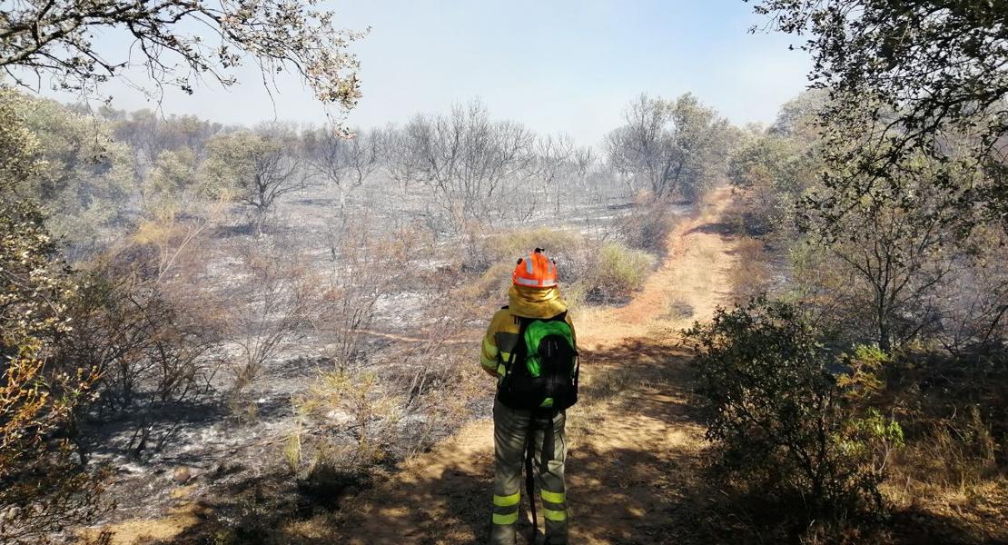 Los bomberos estabilizan en incendio en Bohonal de Ibor e intervienen en otros 2 focos