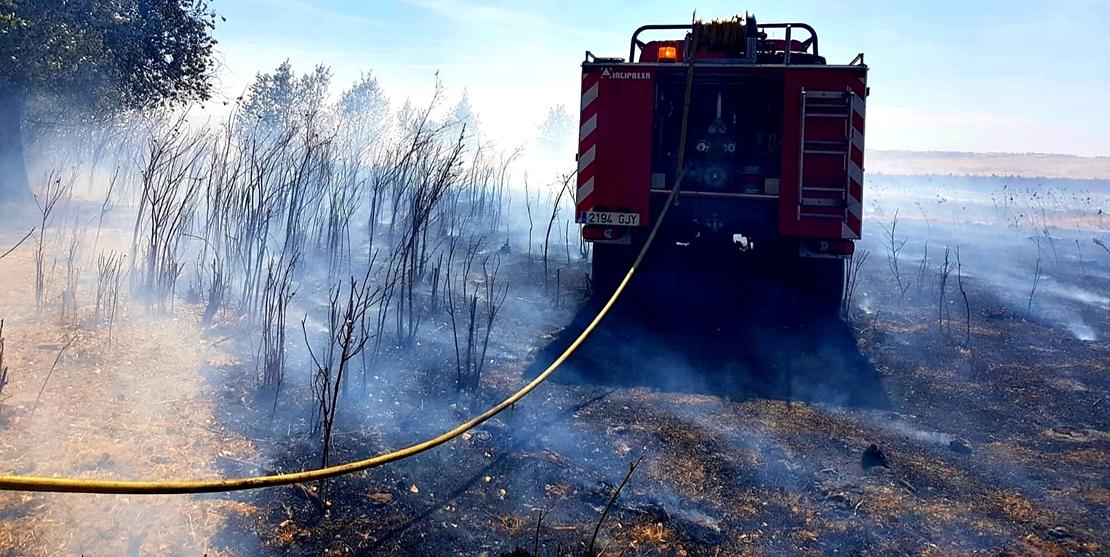 Un incendio quema 30 hectáreas entre Fregenal y Bodonal (BA)