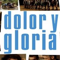'Dolor y gloria' de Almodóvar, candidata de España a los Oscar