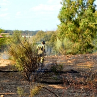 Dos incendios afectan a Valdebótoa y Gévora este domingo