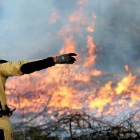 Los bomberos de Badajoz actúan en un incendio cercano a la autovía A-5