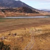 Promedio promueve un plan de emergencia para paliar la sequía