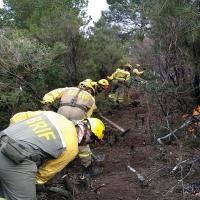 Los bomberos forestales extremeños actúan en un incendio